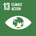 Sustainable Development Goal 13 - Climate Action