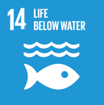 Sustainable Development Goal 14 - Life Below Water