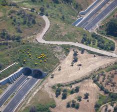 Αυτοκινητόδρομος ανατολικής οδού Πελοποννήσου